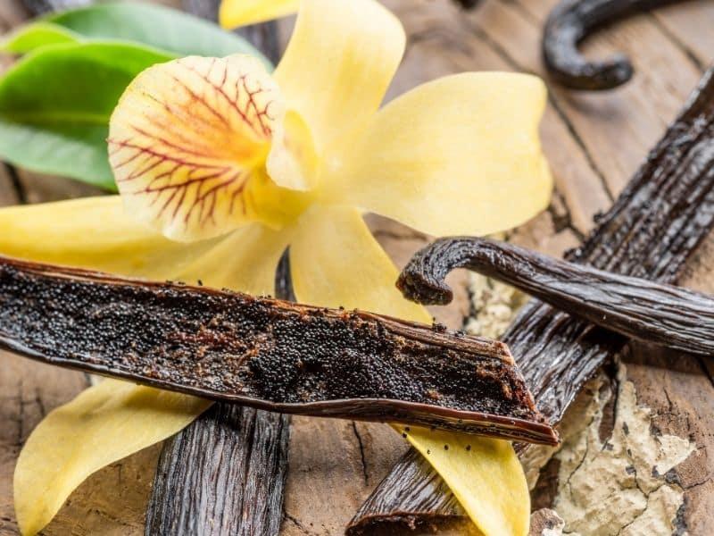 Zapachy do domu - Zapach wanilii pomaga złagodzić stres i niepokój.